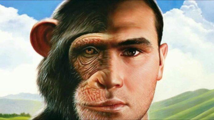 ČOVJEK majmun
